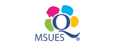 MSUES - Logo